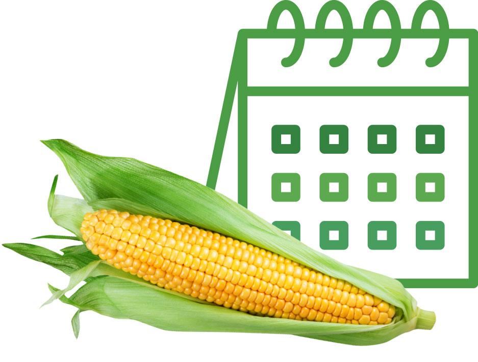 community-ok-produce